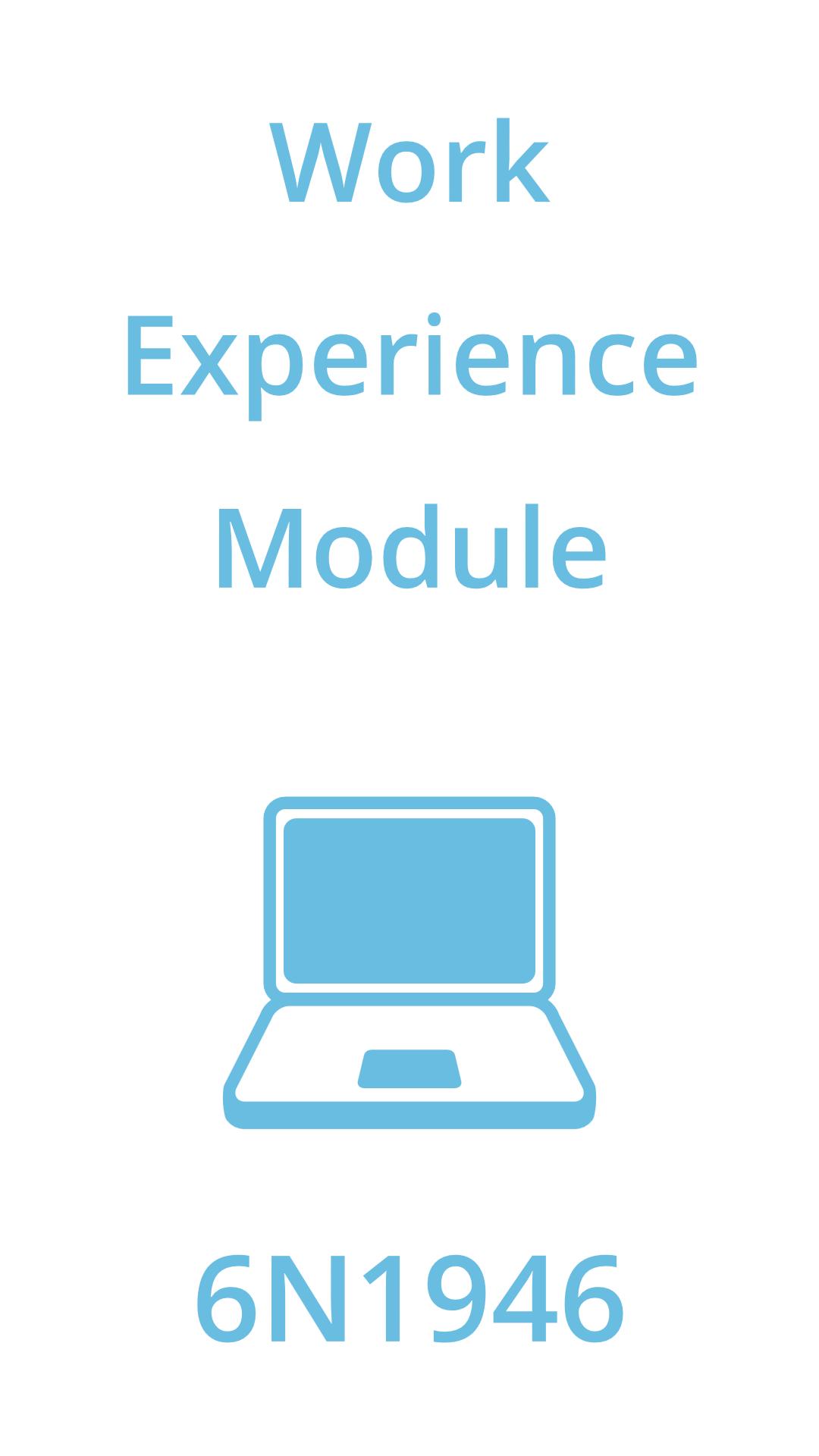 work experience module
